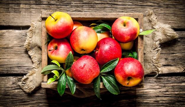 나무 상자에 신선한 빨간 사과입니다. 나무 배경. 평면도