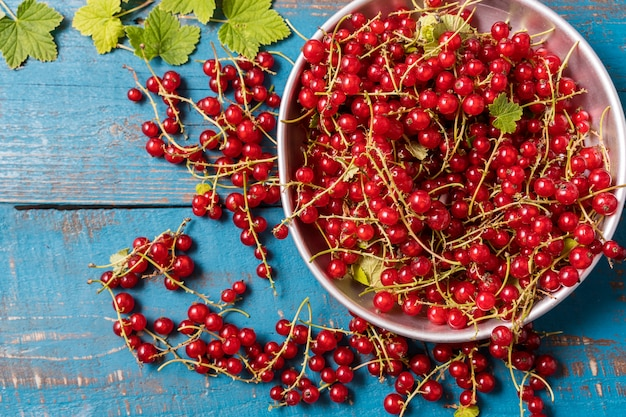 Fresh red currant in a plate oover old blue wooden.