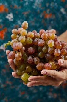 青の背景に手に新鮮な赤ブドウ。高品質の写真