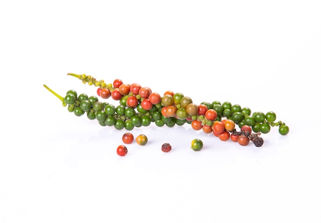 Fresh red and green peppercorns for harverst time isolated on a white background.