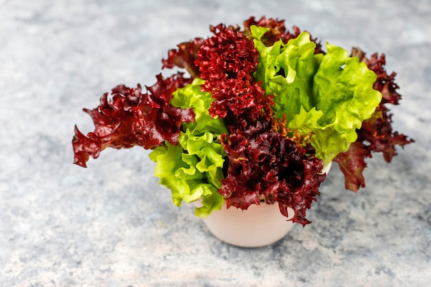 Fresh red lettuce on grey concrete table, top view