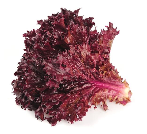 Свежий красный салат на белом