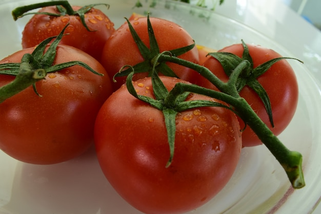 Fresh red tomatoes with drops of water on the tomato skin. mix fruits.fresh fruits close u