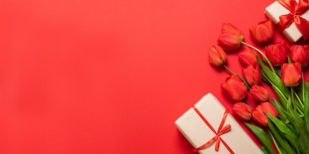 Fresh red tulips with gift box on red
