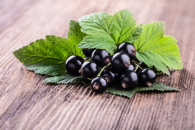 Fresh ripe black currant with leaves