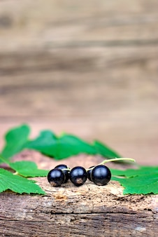 Fresh ripe black currants on an old wooden background.