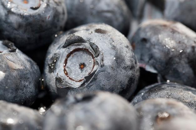 ビタミンを収穫した新鮮で熟したブルーベリー新鮮でおいしいブルーベリーブルーベリーは生で食べることができます