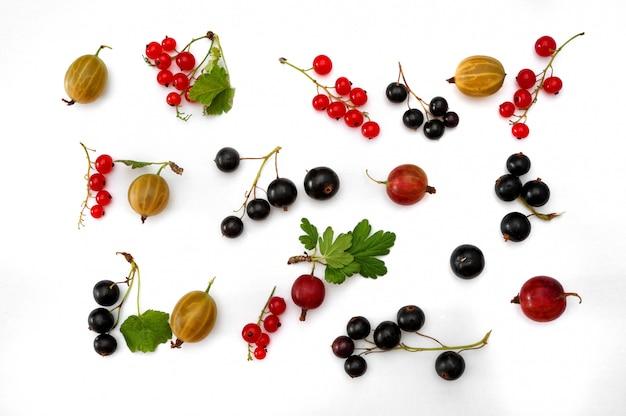 赤と黒スグリと新鮮な熟したグーズベリー