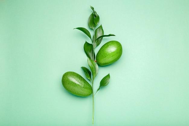 色の背景上の葉を持つ枝に新鮮な熟した緑のアボカド