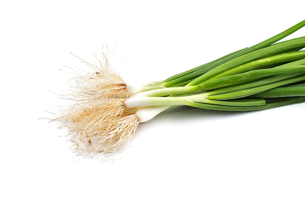 Fresh ripe green spring onions (shallots or scallions)