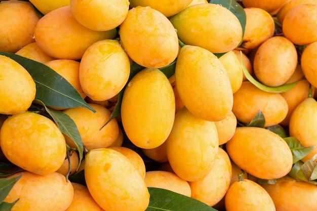 新鮮な熟したマリアンプラム、マヨンチッド、マプラン、プラムマンゴー、トロピカルタイフルーツ