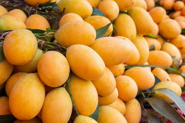Свежие спелые марианские сливы, майонгчид, мапранг, слива манго, тропические тайские фрукты