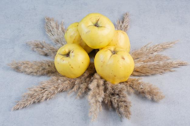 Mele cotogne organiche mature fresche su fondo grigio. mele cotogne di frutta gialla sana.
