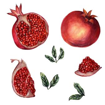 신선한 익은 석류 전체 및 잘게 잘린 씨앗과 잎 수분이 많은 수채화 그림