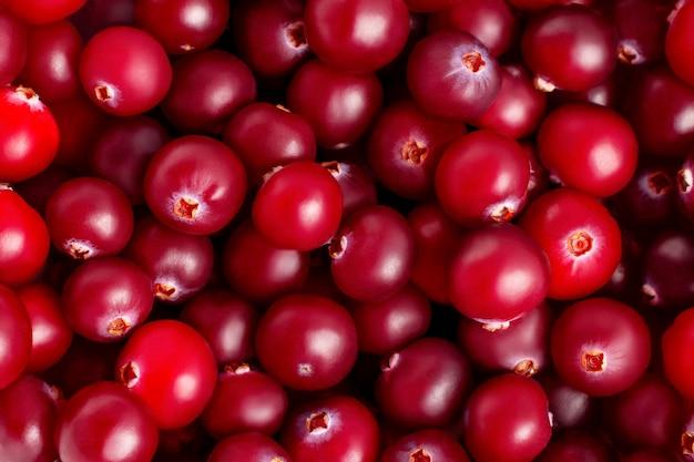 Свежие спелые рубиновые клюквы крупным планом