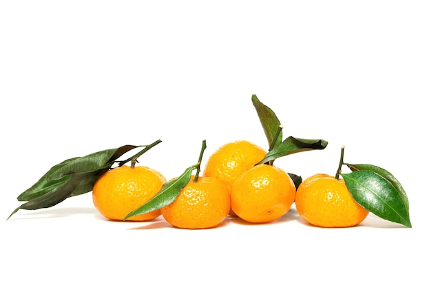 Fresh and ripe tangerines with green leaves on a white background