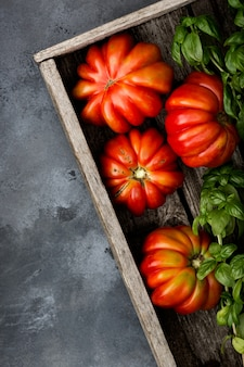 Fresh ripe tomatoes and fresh basil herb in a harvesting box on an old wooden table.