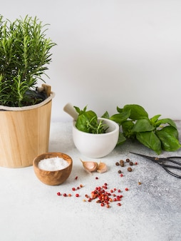Fresh rosemary bush in wooden pots, twigs of fresh green basil, white mortar with pestle, spices and salt and garlic on  gray background.