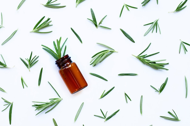 Fresh rosemary leaves with essential oil bottle on white. copy space