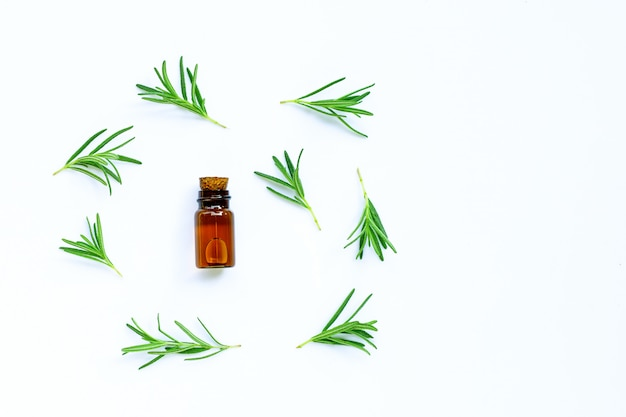 Fresh rosemary leaves with essential oil bottle on white surface.