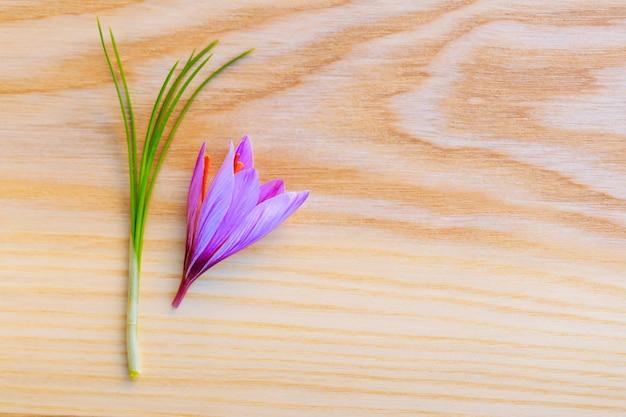 나무 표면에 신선한 사프란 줄기와 꽃. 공간을 복사합니다. 텍스트에 대 한 장소입니다.