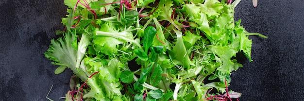Fresh salad leaves mix micro greens keto or paleo