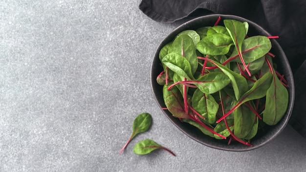 Свежий салат из листьев зеленого мангольда или баннера мангольда. скопируйте место для текста или дизайна.