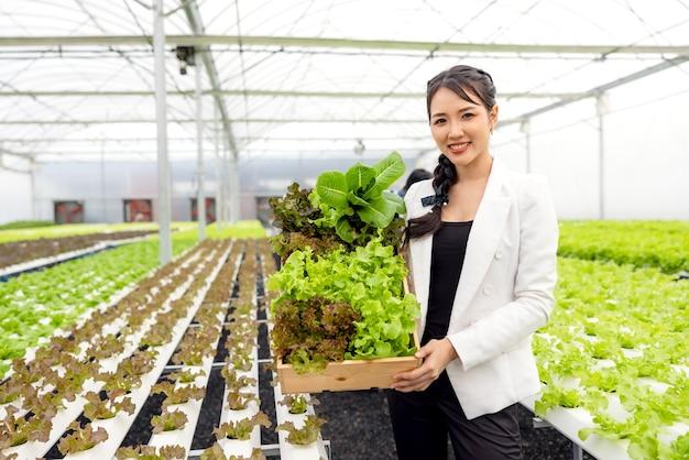 Свежие овощи для салатов собираются азиатскими женщинами-фермерами на фермах с гидропоникой в теплицах и продаются. концепция свежих овощей и здорового питания.