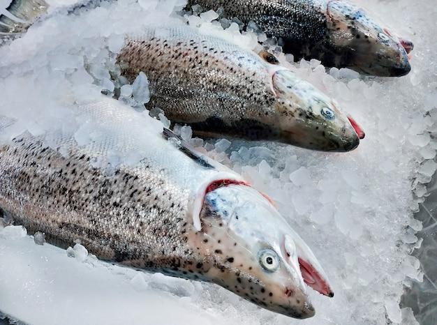 氷上で新鮮なサーモンはスーパーマーケットやシーフードマーケットで売られています。