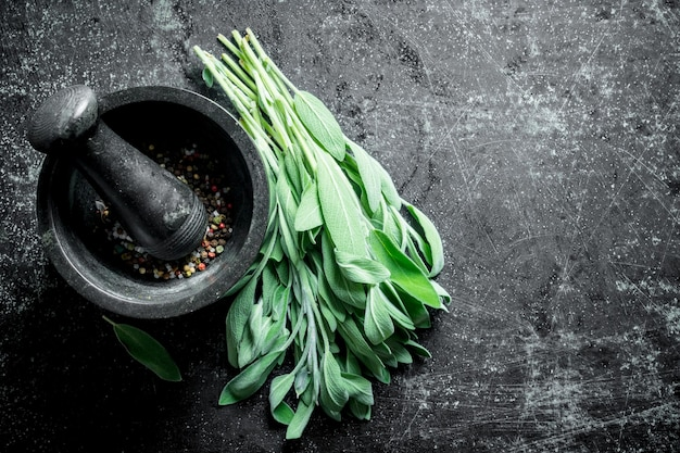 Fresh salvia with spices in a mortar on dark rustic table