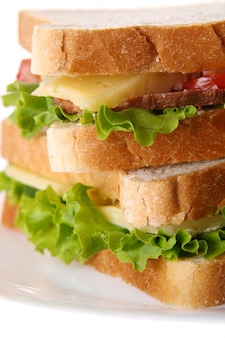 Fresh sandwich with vegetables and tomatoes
