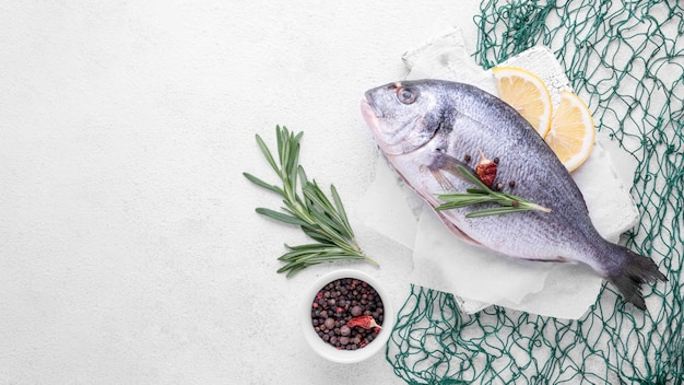 新鮮な鯛の魚と緑の魚の純コピースペース