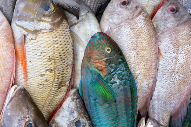 말레이시아 보르네오 코타 키나발루의 길거리 음식 시장에서 판매되는 신선한 바다 생선, 해산물을 닫습니다