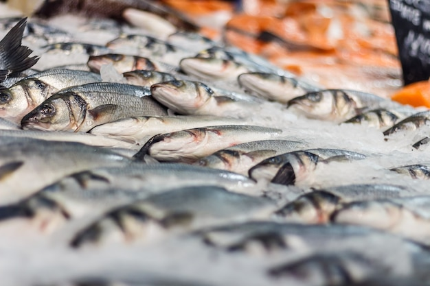 Свежая морская рыба во льду в супермаркете