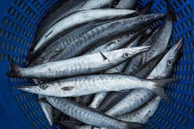市場で売られている新鮮な海の魚。