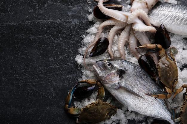 Коктейль из свежих морепродуктов, макет изображения с пространством для текста