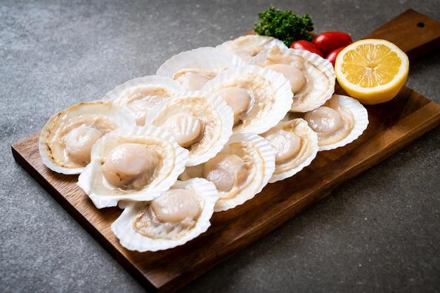Fresh shell scallop