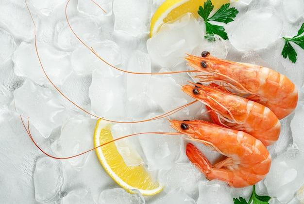 레몬과 파 슬 리와 얼음 배경에 신선한 새우. 평면도, 복사 공간