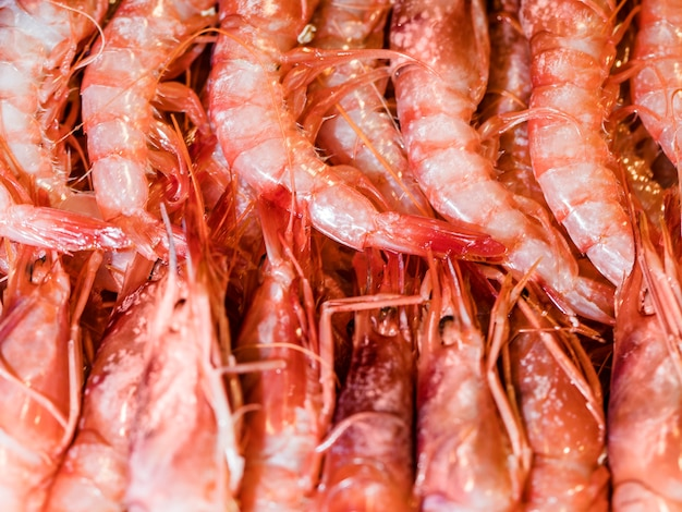 Fresh shrimps for sale in market