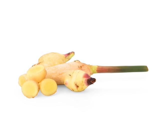 白い背景で分離された新鮮なスライスガランガル根茎