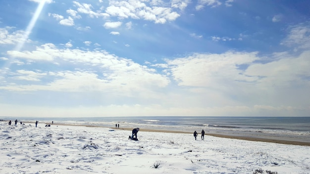 Fresh snow on golden beach.