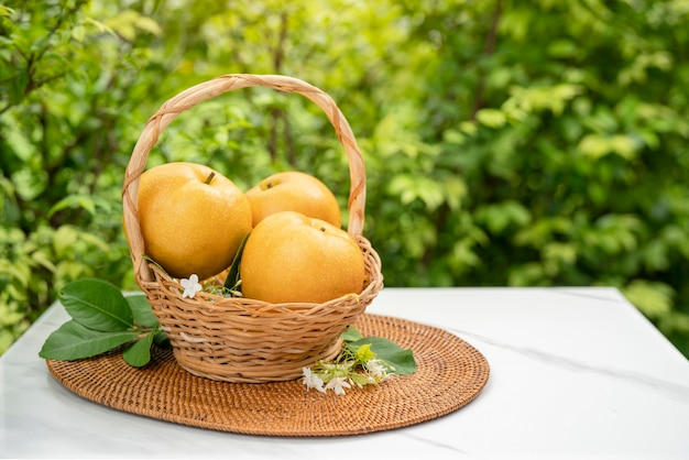 대나무 바구니에 신선한 눈 배 과일, 자연 농장에 바구니에 신선한 한국 배 과일.