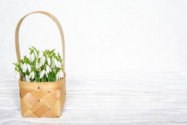 Цветы свежие подснежники в плетеной корзине на белом деревянном столе с копией пространства