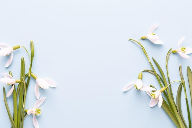 Свежие подснежники на синем с местом для текста. весенняя открытка. день матери. плоская планировка.