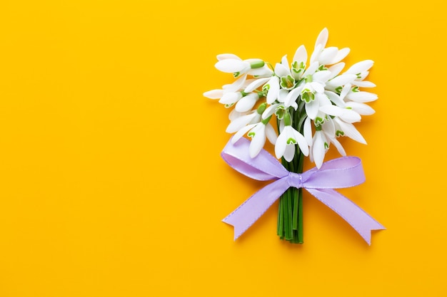 Fresh snowdrops on yellow background with place for text.  flat lay.
