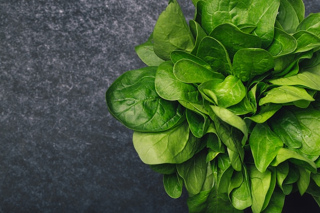 Fresh spinach on a dark background