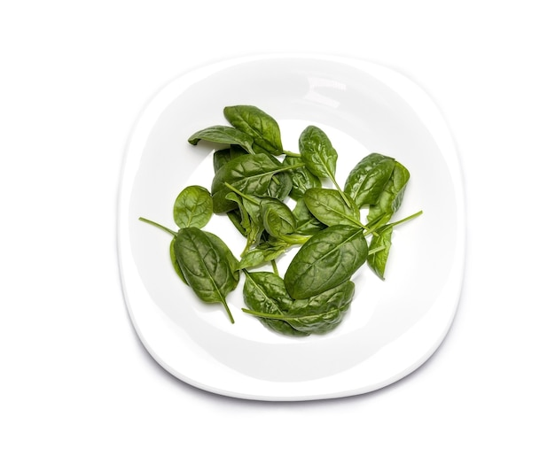 新鮮なほうれん草。皿に緑の野菜の葉、健康食品、ベジタリアンダイエットのコンセプト。