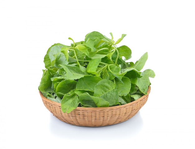 Fresh spinach isolated