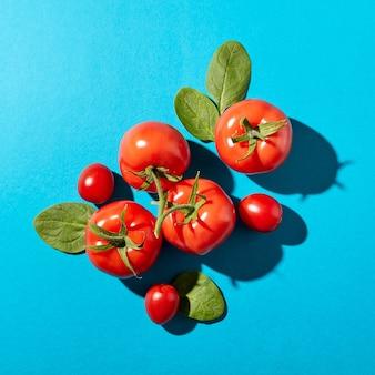 Свежие листья шпината и сочные спелые помидоры на синем фоне с жесткими тенями и копией пространства. органические овощи для салата. плоская планировка