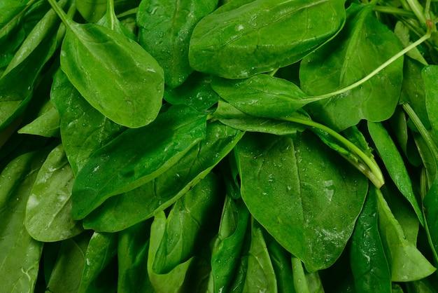 Свежие листья шпината как фон.